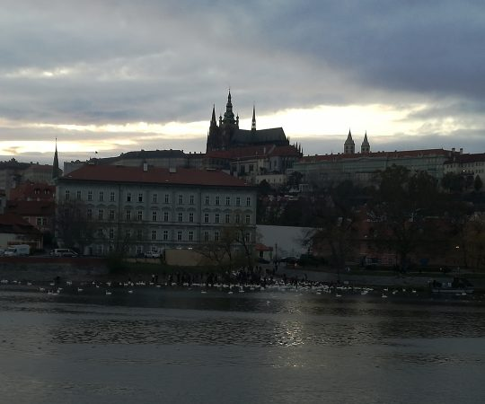 Travel to Prague for Indian families